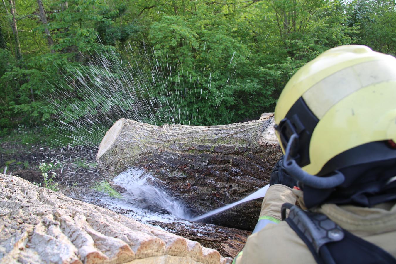 De brandweer blust in de brand staande boomstammen aan de Ringdijk Derde Bedijking.