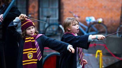 'Festival-dat-niet-genoemd-mag-worden': Deens Harry Potter-festival na 13 jaar verboden
