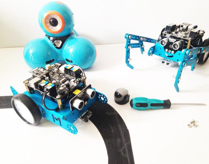 Robots komen in alle soorten en maten.