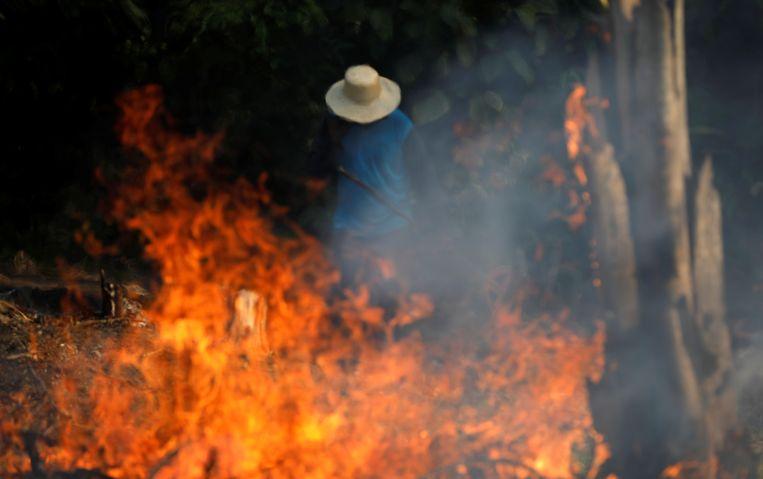 Brandend regenwoud in de deelstaat Amazonas. Beeld Reuters