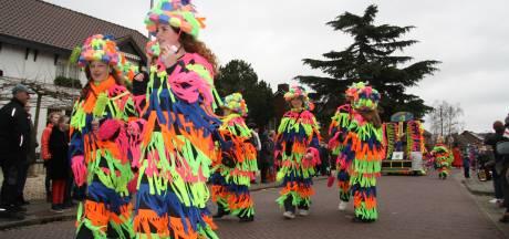 Verschillende Maas en Waalse carnavalsoptochten op een later moment