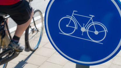 Eén op de zes werknemers ontvangt fietsvergoeding
