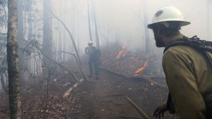 Tien vrijwilligers van Amerikaanse brandweer opgepakt na brandstichting
