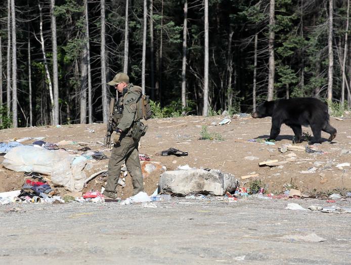 La police a longuement pisté les deux hommes dans des forêts peuplées d'ours et d'animaux sauvages