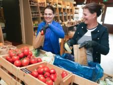 Restaurant de Baeckermat in Westdorpe vindt zichzelf opnieuw uit: voortaan bestellen met je mobieltje