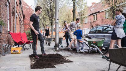 Bewoners vervangen zelf 77 vierkante meter voetpad door tuintjes