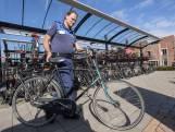 Weesfietsen ruimen in Hof van Twente