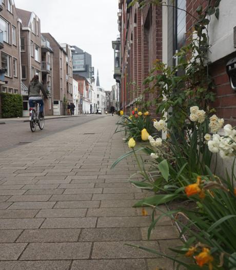 Gemeente Den Bosch geeft honderd gratis geveltuintjes weg om straatbeeld te vergroenen