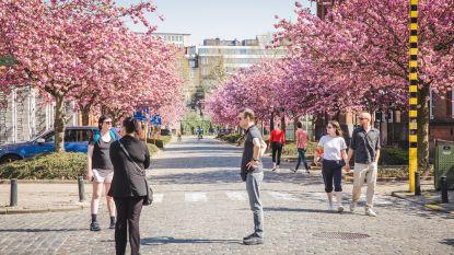 Stad Gent creëert extra wandel- en fietsstraten om sociale afstand te verzekeren