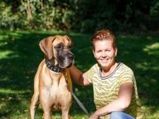 Soof is voorlopig de mooiste hond van Rotterdam: 'Ze wordt meestal vergeleken met een paard'