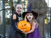 Stelling | Kinderen kunnen vanavond best langskomen voor Halloween