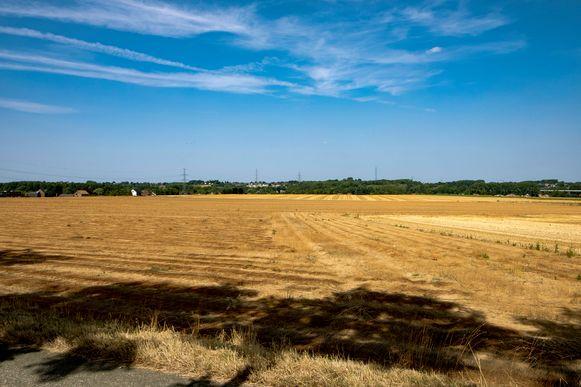 Door de aanhoudende droogte van afgelopen zomer kampte onze regio met zeer lage grondwaterstanden.