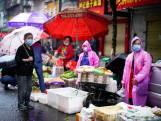 Internationaal onderzoek in China naar oorsprong Covid-19: het team gaat op pad
