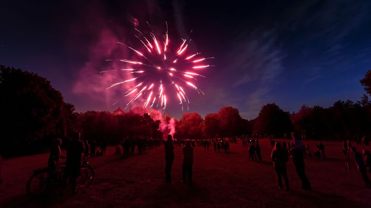Vuurwerk boven het park van Zelzate.