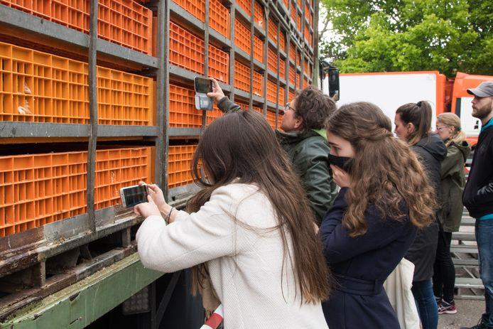 Leden van The Save Movement waren vanochtend bij kippenslachter GPS in Nunspeet, waar ze een protestactie hielden.