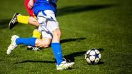 SK Westrozebeke schort trainingen op door corona-uitbraak bij Westvlees
