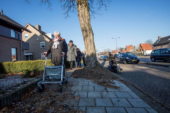 Annie Ermens (met rollator) heeft moeite met het passeren van de boom. Rechts rijdt Annemie van Hoof in haar scootmobiel over de ventweg.