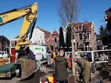 Groene omlijsting voor Groote Markt van Oldenzaal