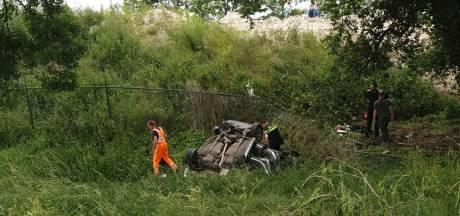 Vermist hondje na auto-ongeluk op A1 bij Wilp terecht