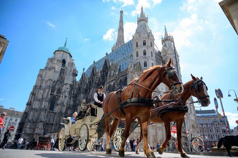 De Stephansdom in Wenen.  Beeld AFP