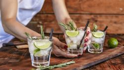 International Gin & Tonic Day: 7 heerlijke receptjes om je dorst te lessen