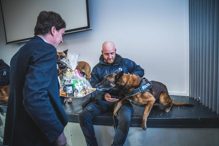 Torres, met baasje Gunter, snuffelt aan de koekjesmand die hij krijgt van burgemeester Mathias De Clercq.