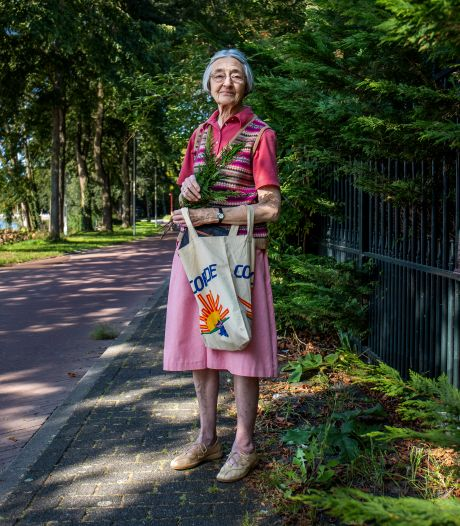 Renate (83) struint gewapend met een snoeischaar de berm af: 'Het is eigenlijk gappen, want het mag niet'