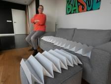 Geen barkruk, hond of kat meer op de bank door Nuenense uitvinding