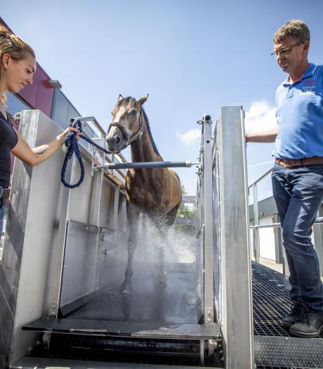 Kylix uit Tubbergen ontwikkelde fitnesstoestel voor paarden
