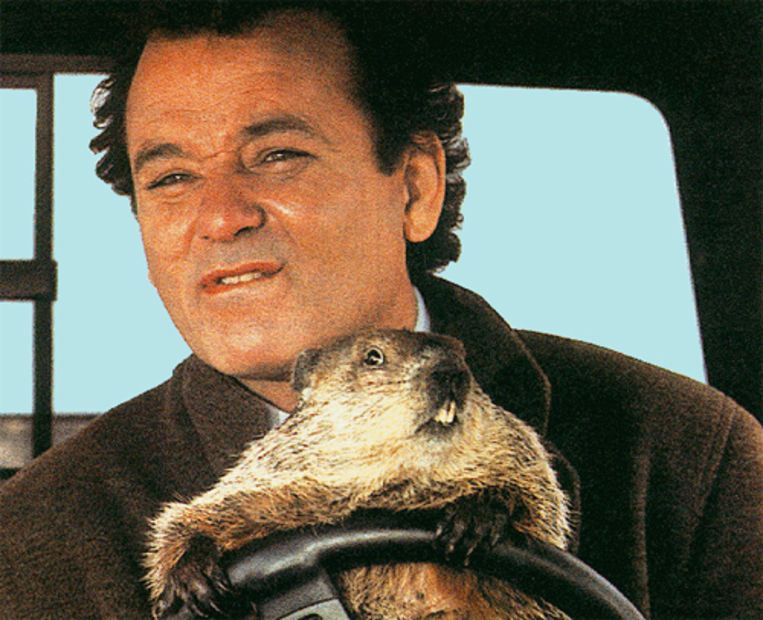 Bill Murray in Groundhog Day. Beeld
