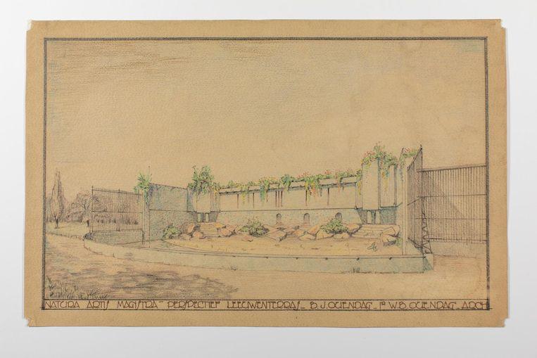 Ingekleurde bouwtekening van het leeuwenterras in Artis Beeld Bas Uterwijk