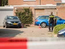 Wild West in Wijk bij Duurstede: 'Ik schrok me te pletter'