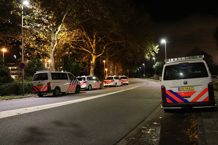 Het jonge overvalsduo werd gearresteerd bij Van der Valk Vianen
