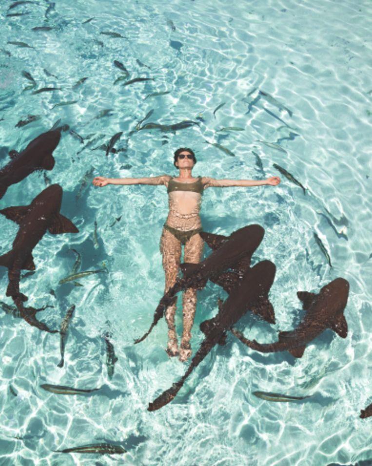 Als ze er een hoogtepunt moet uitpikken, dan wel het zwemmen met haaien op de Bahama's.