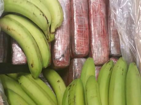 Politie vindt 12 kilo coke tussen de bananen in Hedel