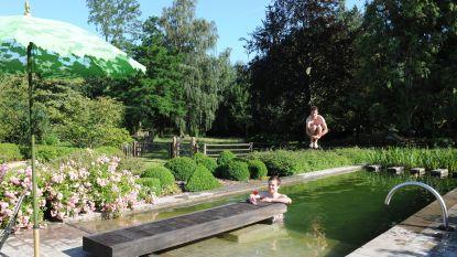 Een boomhut en zelf aangelegde zwemvijver: de tuin van Mark en Sofie is een groen paradijs in het dorpscentrum