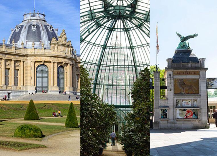 Van het AfricaMuseum en de Koninklijke Serres tot de Zoo van Antwerpen: allemaal zijn ze gebouwd in opdracht van de koning-bouwheer.