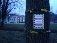 Milieudefensie demonstreert in centrum  Wageningen tegen bomenkap