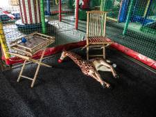 Vernieuwd Monkey Town Wijchen wil in december weer open: 'Mensen zullen het niet herkennen'