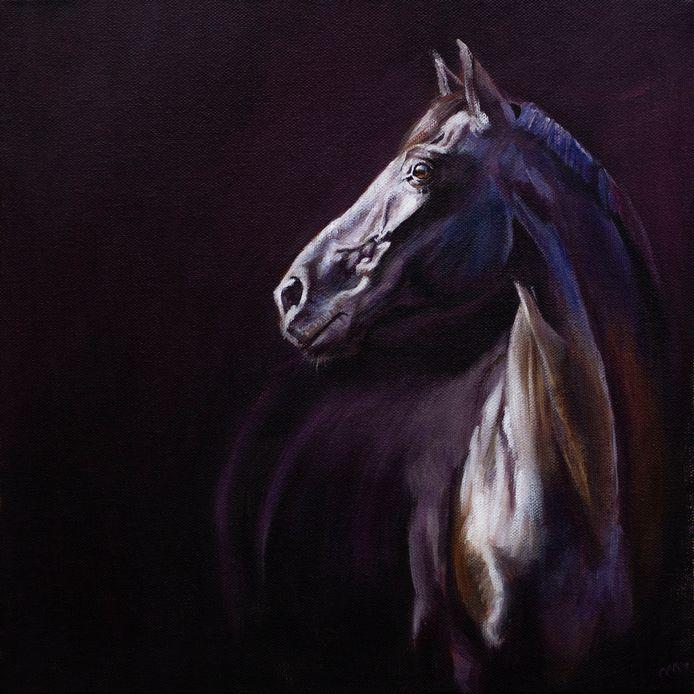 Paard met licht-donkereffect.