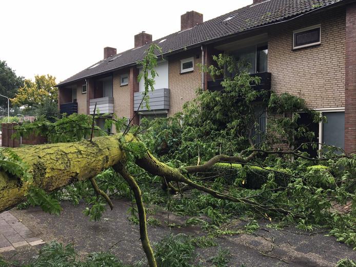 Een flinke tak brak af in een woonwijk in Deurne.