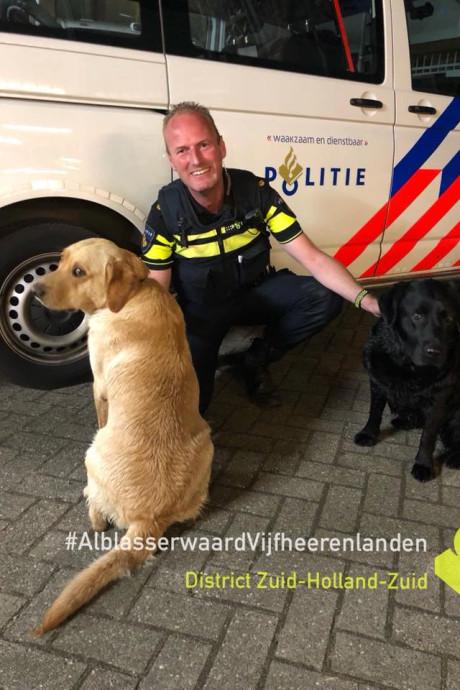 Labradors midden in de nacht te gast op politiebureau in Gorinchem