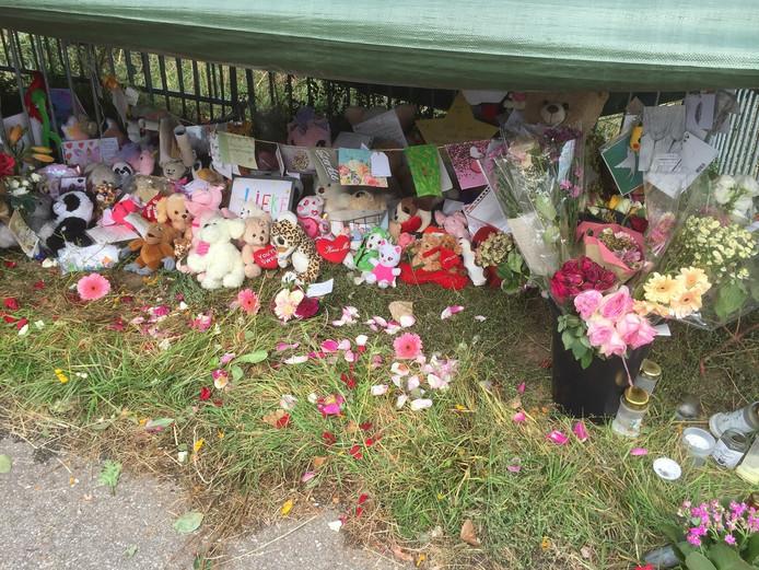 De gedenkplaats voor Lieke is opgeruimd.