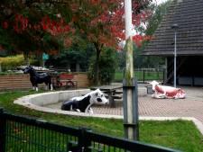 Naar de kinderboerderij en natuurspeeltuin Sliedrecht gaan kan weer, maar niet als vanouds
