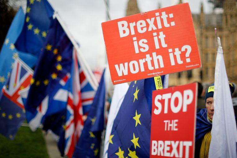 Ook vandaag vindt er protest plaats tegen de brexit.