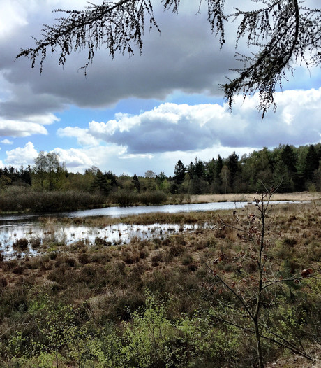Toerisme Zuidwest Drenthe gooit folders op een hoop