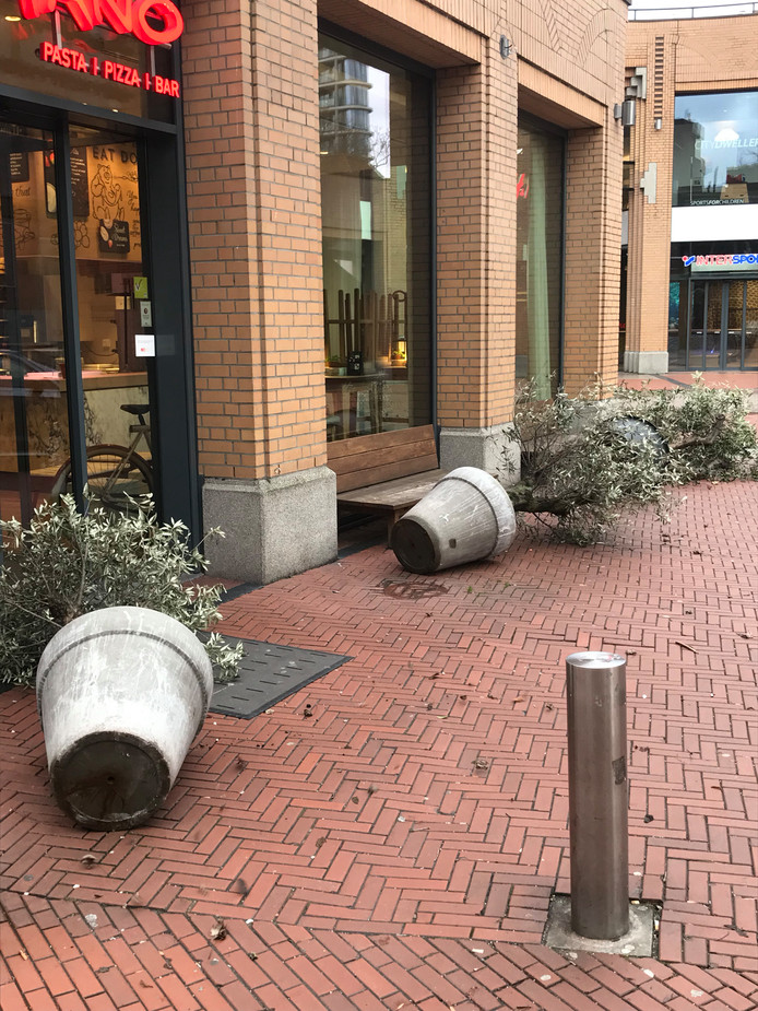 De Jan van Lieshoutstraat