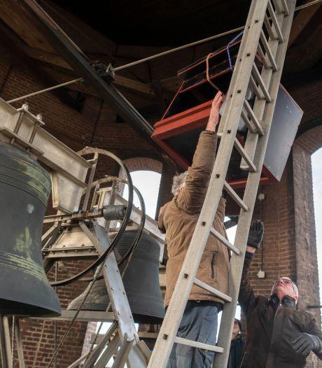 Uit de goot, in de kast: slechtvalken in Tilburg krijgen lesje eieren leggen