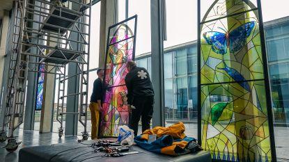 Rondreizende expo van glasramen in provinciehuis promoot ontwikkeling van Zoniënwoud