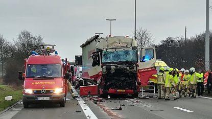 Trucker met helikopter afgevoerd nadat hij inrijdt op file: E34 volledig versperd